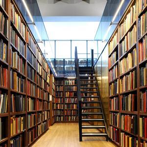 Библиотеки Земетчино
